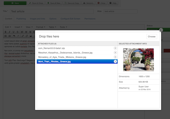 Screenshot of FILEman attachment management UI